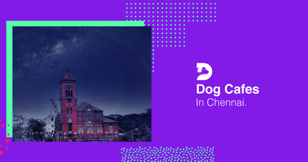 Dog cafes in Chennai