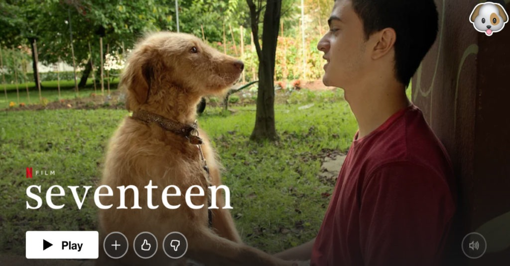 Seventeen Netflix